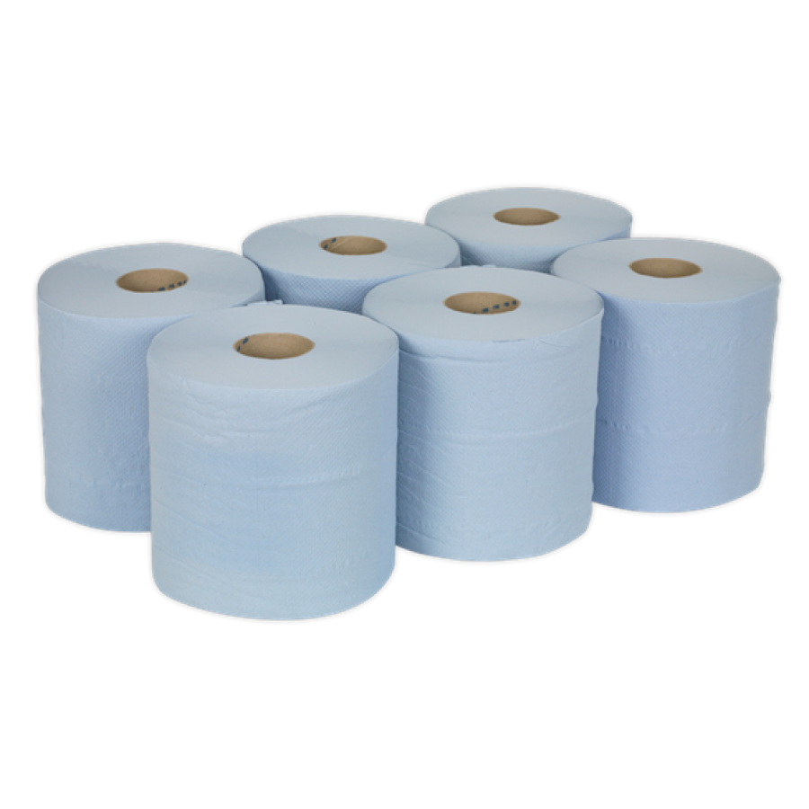 PAPER ROLL BLUE 2 PLY
